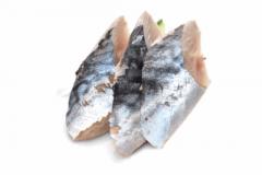 22-Saba (maquereau)